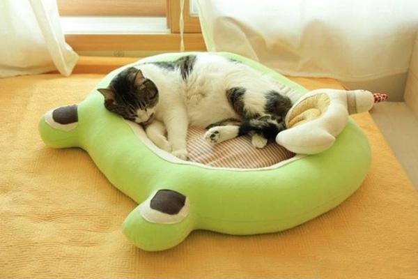 วิธีทำที่นอนแมว เบาะนอนแมว